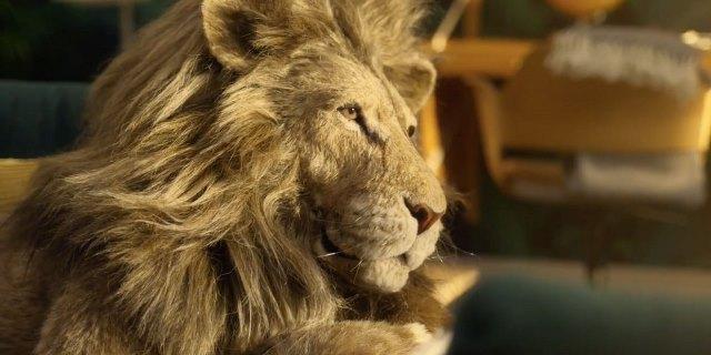 IKEA и еден пријателски настроен лав  Одмараат  во оваа нова реклама